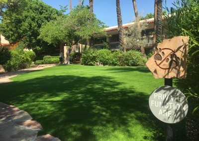 Paradise Artificial Lawn in Phoenix, Arizona at a Hotel