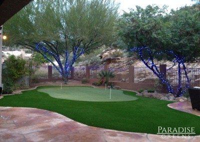 Putting Green in Fountain Hills, AZ