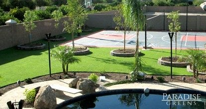 Artificial Grass with Sport Court in Chandler, AZ