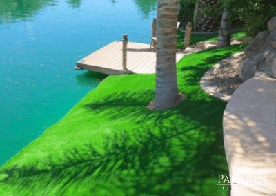 Artificial Grass Around Lake at Scottsdale Ranch