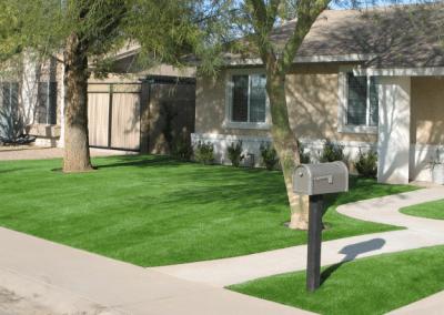 Synthetic Turf Lawn in Phoenix, AZ