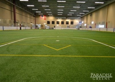 Removable Artificial Sports Field at Coyotes Ice Den in Scottsdale, AZ