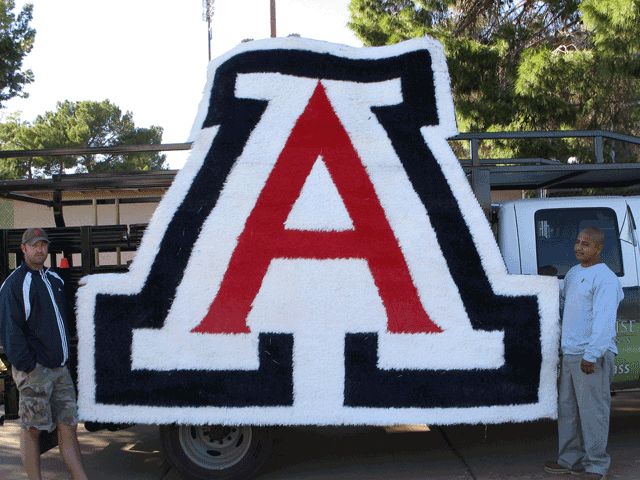 U of A Artificial Grass Sports Logo for University of Arizona