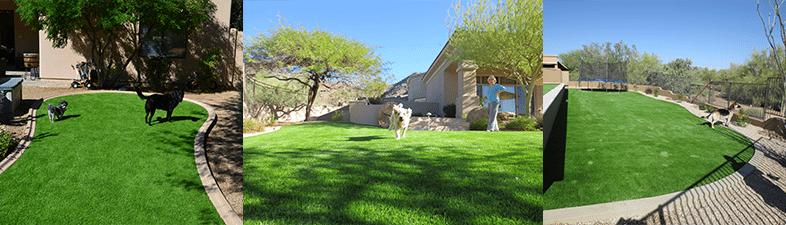 artificial grass pet run arizona