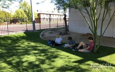 Phoenix Art School Installs Artificial Turf