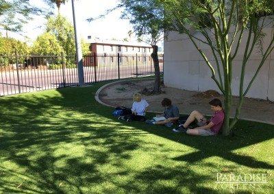 Artificial Grass at Metropolitan Arts Institute in Phoenix, AZ