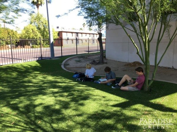 Artificial Grass at Metropolitan Arts Institute in Phoenix, AZ